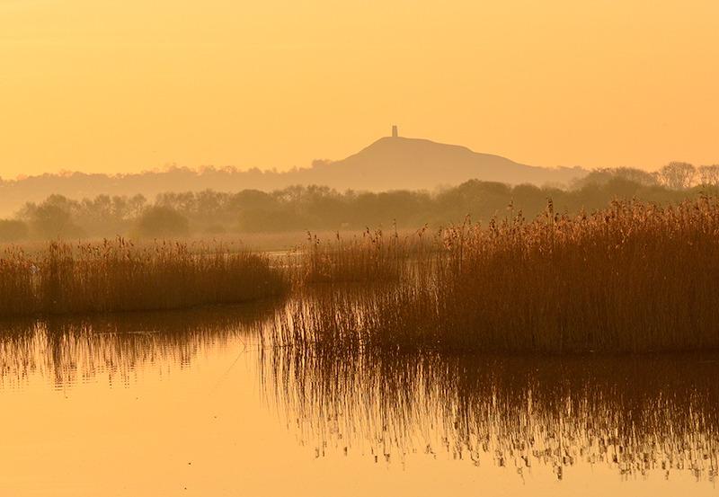 Thalia-Yoga-golden-sunrise-tor